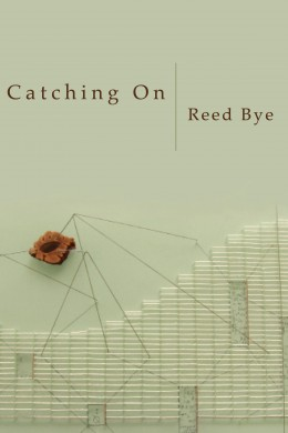 Catching-On-Front-Cover-260x390