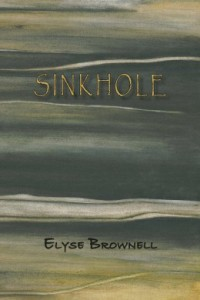 Sinkhole-Front-Cover-260x390